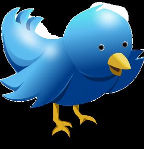 La red social Twitter al alcance de cualquier negocio
